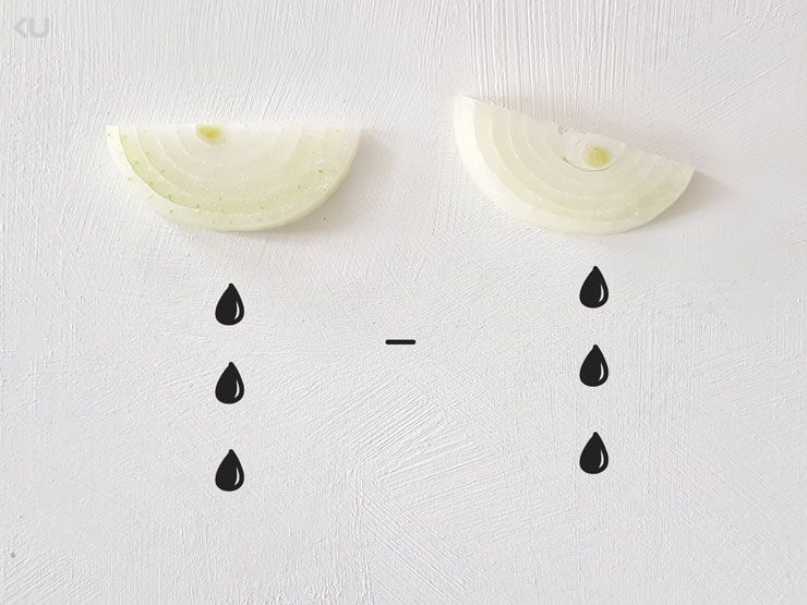 Dlaczego płaczemy przy krojeniu cebuli?