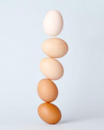 Jak mrozić białka jaj?