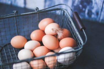 Jak przechowywać jajka? Poznaj 5 praktycznych nawyków